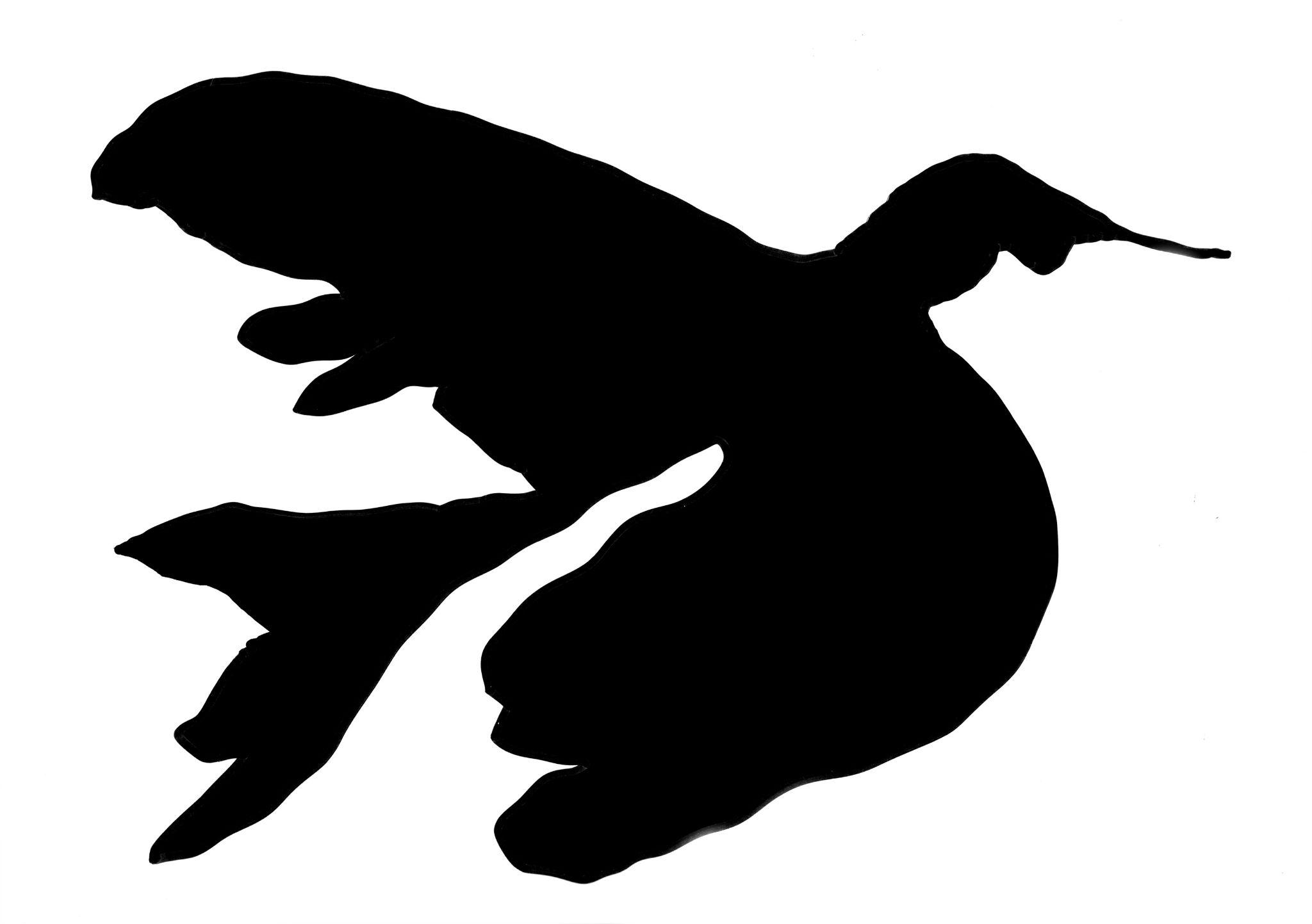 Kleon Medugorac Freikonzert Logo